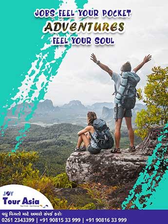 joy-tour-poster-2